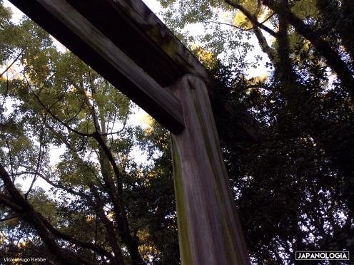 Torii, Atsuta Jingu, Nagoya