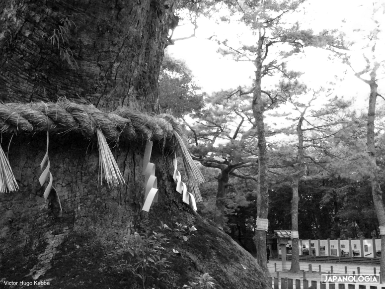 Shimenawa, Atsuta Jingu, Nagoya