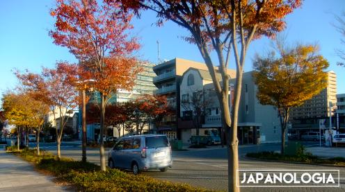 Itaya Machi - Hamamatsu, Shizuoka