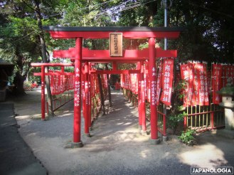 Torii (鳥居)